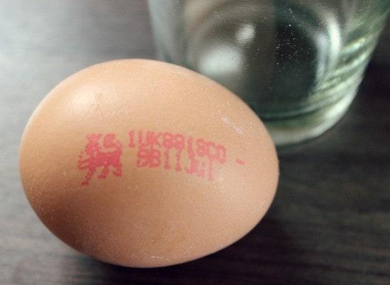 old egg
