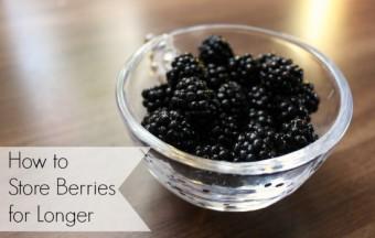 make berries last longer