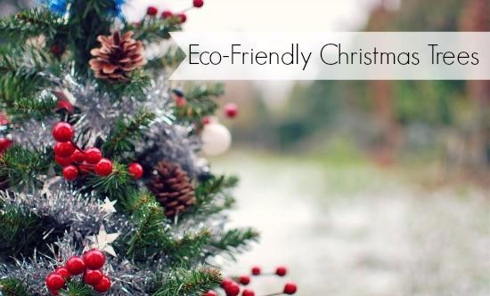 Eco Friendly Christmas eco-friendly christmas tree ideas | moral fibres - uk eco green blog