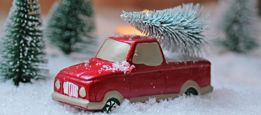 eco friendly christmas tree options