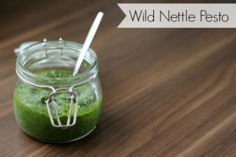 wild nettle pesto