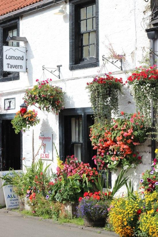 Lomond Tavern Falkland