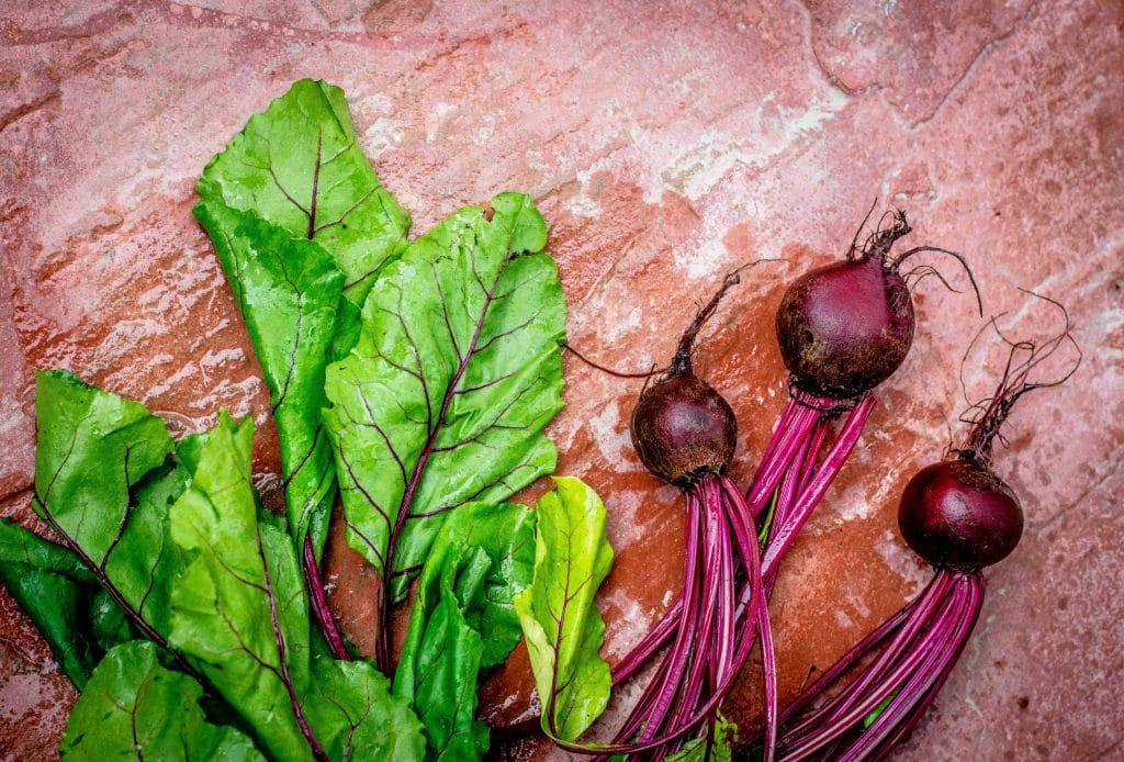 produce in season in february
