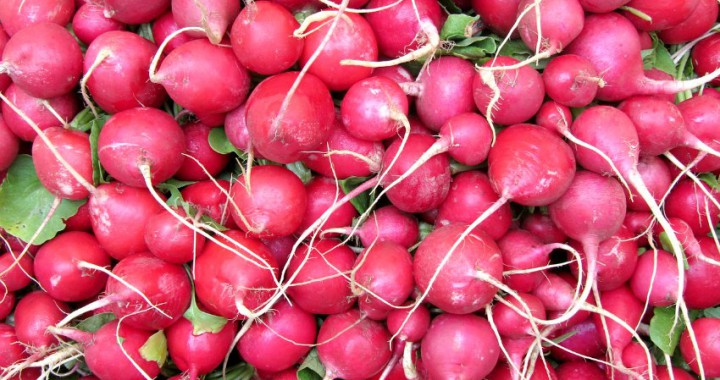 fruit vegetables in season in april