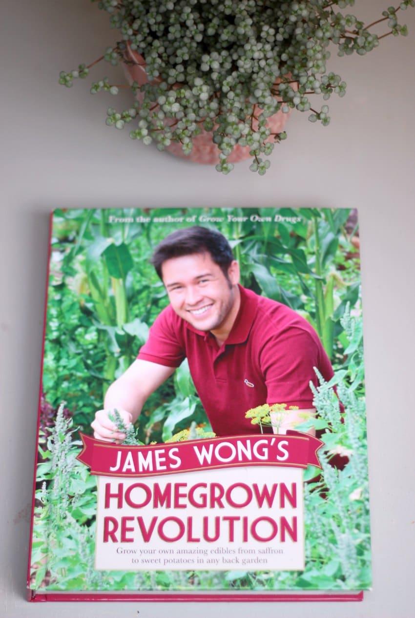 james wong homegrown revolutions