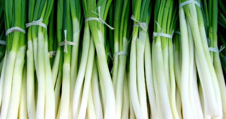 storing spring onions
