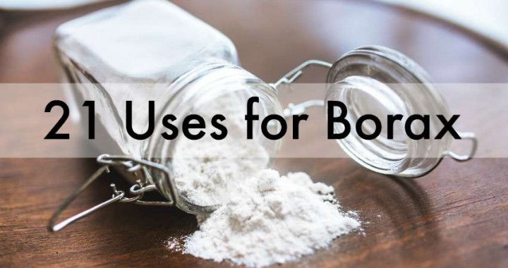 uses of borax