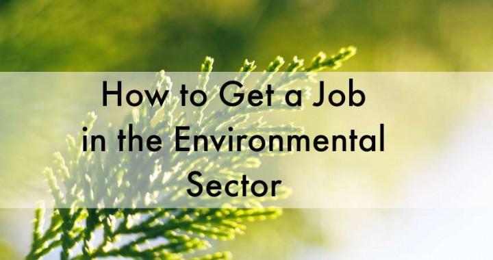 how to get an environmental job