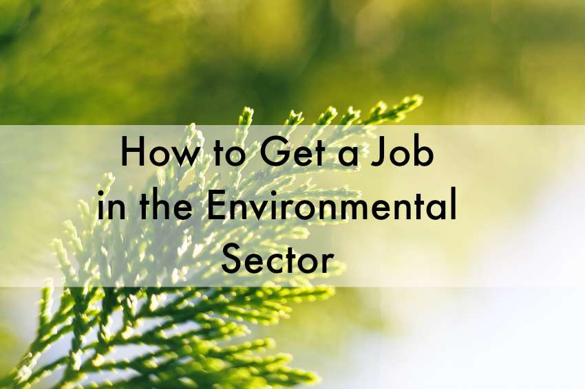 how to get an environmental job