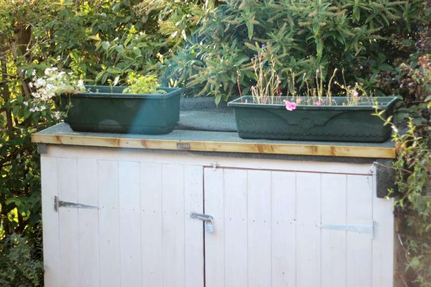 makeshift green roof