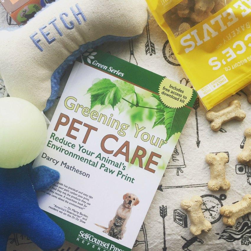 eco-friendly dog care darcy matheson