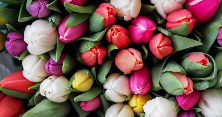 10 alternative valentine's day ideas