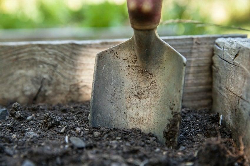 sustainable garden design ideas