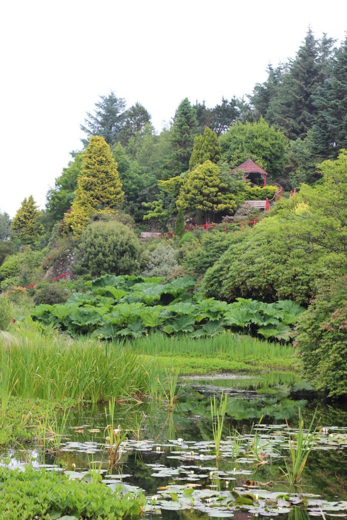 Glenwhan Gardens on the Rhins of Galloway, Dumfries & Galloway