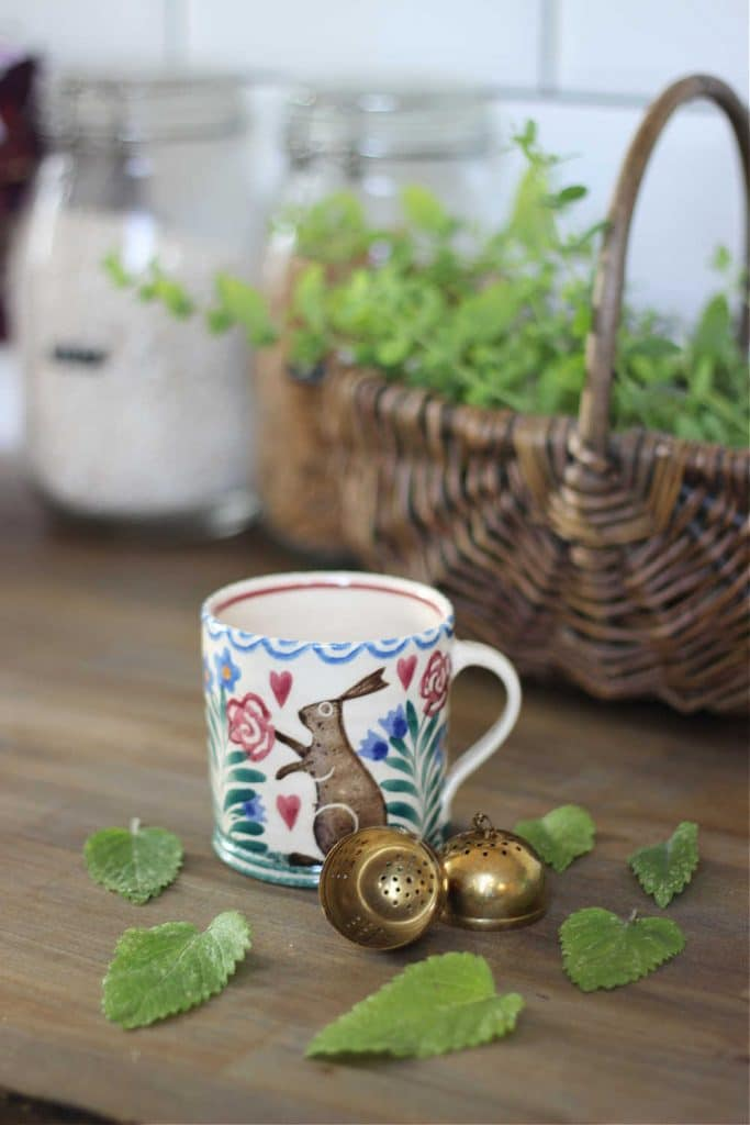 A cup and tea infuser, with fresh lemon balm leaves