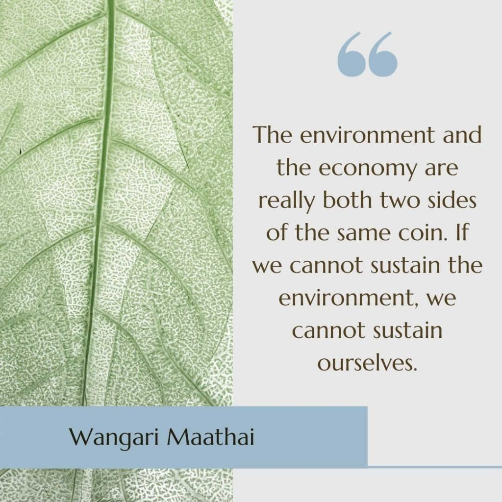"""Image of a leaf with the sustainability quote """"The environment and the economy are really both two sides of the same coin. If we cannot sustain the environment, we cannot sustain ourselves"""" by  Wangari Maathai"""