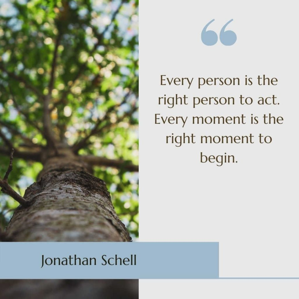 """Image of tree with the sustainability quote """"Every person is the right person to act. Every moment is the right moment to begin"""" by Jonathan Schell"""